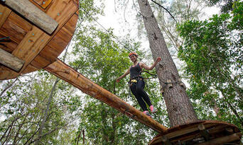 TreeTop Adventure Park Central Coast Thumbnail 4