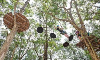 TreeTop Adventure Park Central Coast Thumbnail 3