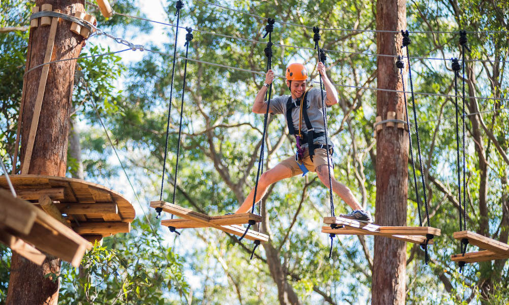Treetop Adventure Park Central Coast Ourimbah State Forest