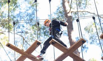 TreeTop Adventure Park Central Coast Thumbnail 6