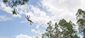 Newcastle Treetop Adventure Park Thumbnail 2