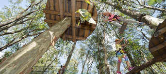 Newcastle Treetop Adventure Park Thumbnail 1