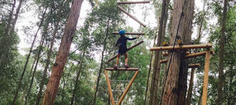 Newcastle Treetop Adventure Park Thumbnail 4