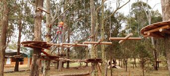 Western Sydney Treetop Adventure Park Thumbnail 6