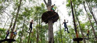 Western Sydney Treetop Adventure Park Thumbnail 3