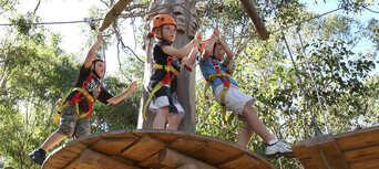 Western Sydney Treetop Adventure Park Thumbnail 2