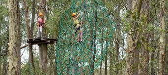 Western Sydney Treetop Adventure Park Thumbnail 1