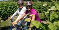 Full Day Deluxe Guided Biking Wine Tour Thumbnail 1