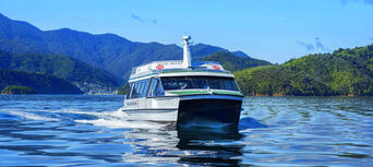 Marlborough Sounds Mail Boat Cruise from Picton Thumbnail 1