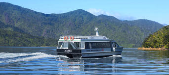 Marlborough Sounds Mail Boat Cruise from Picton Thumbnail 2