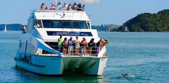 Bay of Islands Original Cream Cruise Thumbnail 2