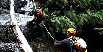 South Coast Canyoning - Rainforest Canyon Thumbnail 1