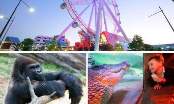 Melbourne Zoo, Aquarium & Melbourne Star Pass Thumbnail 1