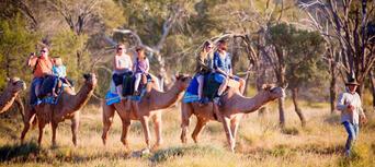Alice Springs Noon Camel Ride Thumbnail 5