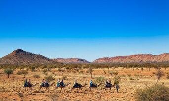 Alice Springs Noon Camel Ride Thumbnail 1