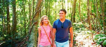 Noosa and Sunshine Coast Hinterland Tour Thumbnail 2