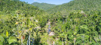 Whitsundays Segway Rainforest Discovery Tour Thumbnail 4