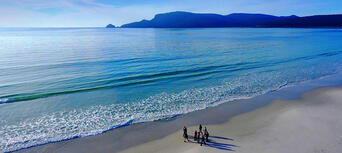 Bruny Island Full Day Tour including Six Course Lunch Thumbnail 5