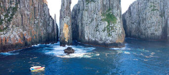 Tasman Island Cruise from Port Arthur Thumbnail 2