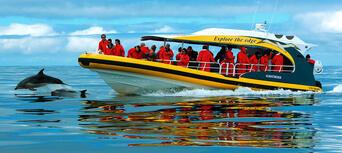 Tasman Island Cruise from Port Arthur Thumbnail 6