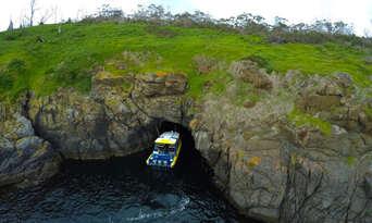 Iron Pot Scenic Cruise from Hobart Thumbnail 6
