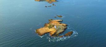 Iron Pot Scenic Cruise from Hobart Thumbnail 3
