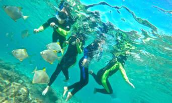 Gold Coast Kayaking and Snorkelling Tour to Wavebreak Island Thumbnail 6