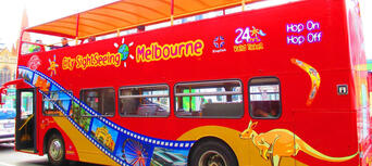 Melbourne Hop on Hop off Tour & Melbourne Zoo Thumbnail 3