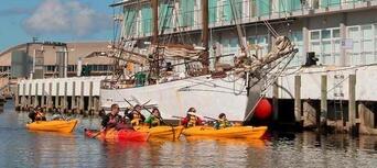 Hobart City Kayaking Half Day Tour Thumbnail 4