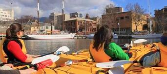 Hobart City Kayaking Half Day Tour Thumbnail 5