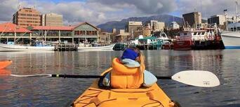 Hobart City Kayaking Half Day Tour Thumbnail 6