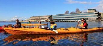 Hobart City Kayaking Half Day Tour Thumbnail 3