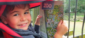 Auckland Zoo General Admission Tickets Thumbnail 6