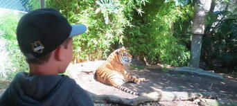 Auckland Zoo General Admission Tickets Thumbnail 5