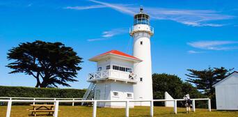 Tiritiri Matangi Island Guided Day Tour from Auckland Thumbnail 3