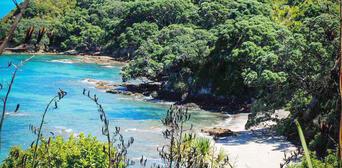 Tiritiri Matangi Island Guided Day Tour from Auckland Thumbnail 5