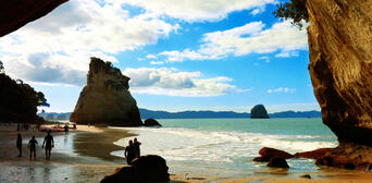 Cruise to The Coromandel from Auckland with Optional Return Thumbnail 4