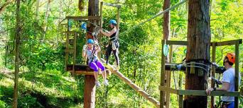 TreeTop Challenge at Currumbin Wildlife Sanctuary Thumbnail 3