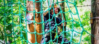 TreeTop Challenge at Currumbin Wildlife Sanctuary Thumbnail 4
