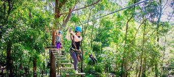TreeTop Challenge at Currumbin Wildlife Sanctuary Thumbnail 6