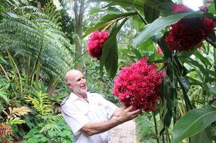 Kuranda Coach Tour with Rainforestation Nature Park Entry Thumbnail 1