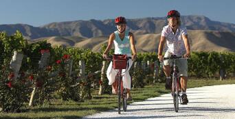 Full Day Unguided Biking Wine Tour Thumbnail 1