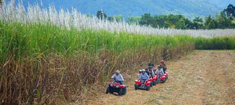 Cairns ATV Quad Bike Tour Thumbnail 3