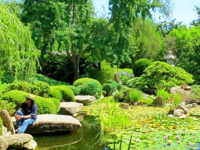 Free Things To Do  Himeji Garden Adelaide