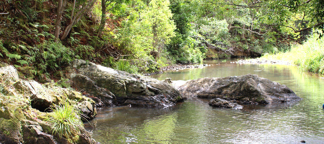 Free Things To Do  Currumbin Rock Pools