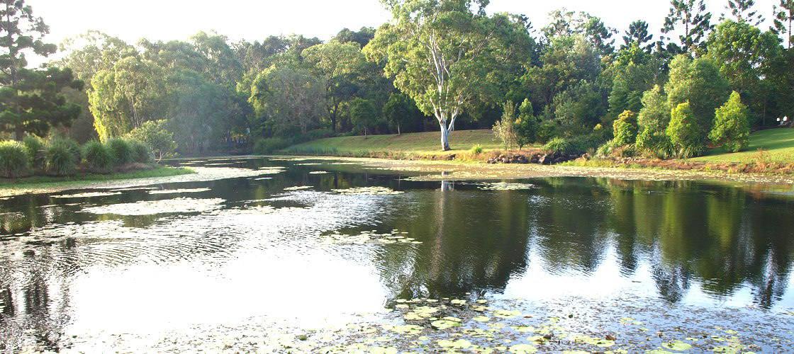 Gold Coast Regional Botanic Gardens