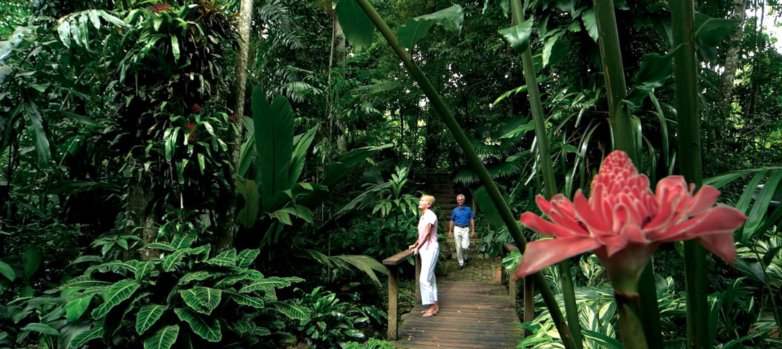 Free Things To Do  Cairns Botanic Garden