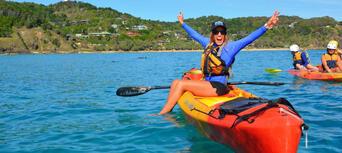 Brunswick River Nature Kayak Tour Thumbnail 6