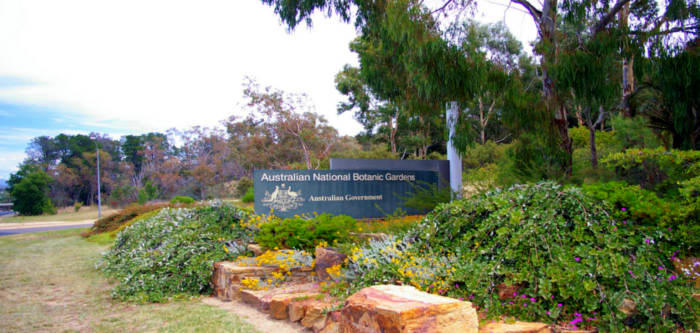 Free Things To Do  Australian National Botanic Gardens