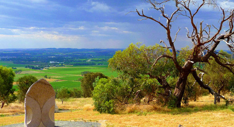 Free Things To Do  Barossa Sculpture Park